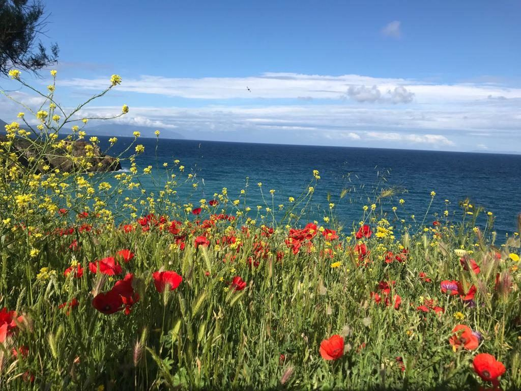Week end natura- Le Corti di Montepitti